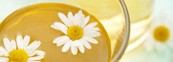 Kamillavirágzat tea
