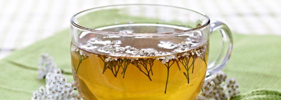 Közönséges cickafark virágos hajtás tea