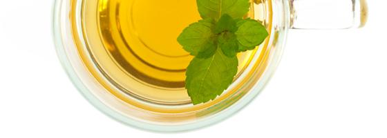 Orvosi citromfű levél tea