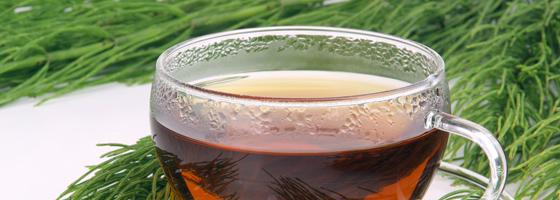 Mezei zsurló meddő hajtás tea